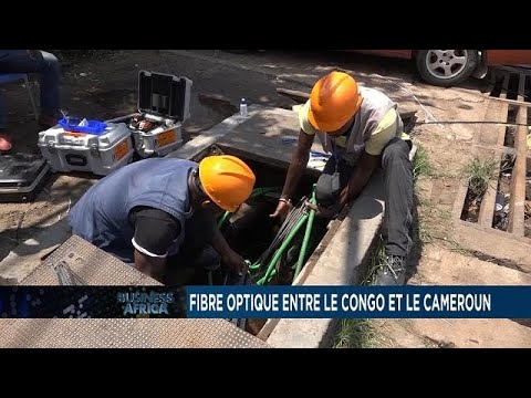 Congo-Cameroon fiber optic project, a medium for regional interconnectivity [Business Africa]