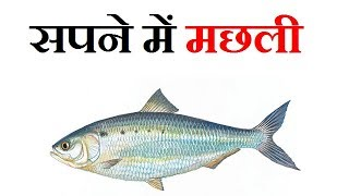 Fish in dream..hindi me