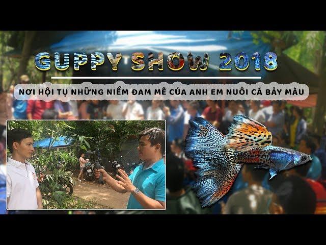 GUPPY SHOW 2018 - BUỔI OFFLINE LỚN NHẤT CHO ANH EM ĐAM MÊ CÁ BẢY MÀU TẠI TP.HCM