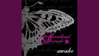 Secondhand Serenade Animal