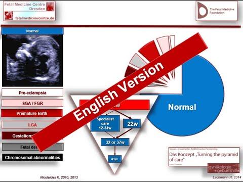 Dr. Robert Lachmann / English Version / fetalmedicinecentre.de / Fetal Medicine Centre Dresden