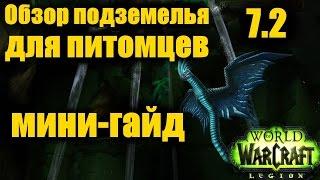 ОБЗОР ПОДЗЕМЕЛЬЯ для ПИТОМЦЕВ (мини-гайд) WoW Легион 7.2