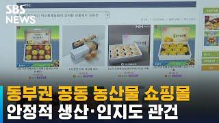 동부권 공동 농산물 쇼핑몰…안정적 생산·인지도 관건 /…