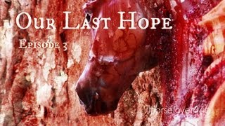 "Our Last Hope - Book 1 ""Dawning"": Chapter 3 ""A Bond So Powerful"" (Breyer Horse Movie)"