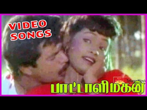 Pattali Magan Tamil Video Songs Back 2 Back|| Arjun, Sindhu