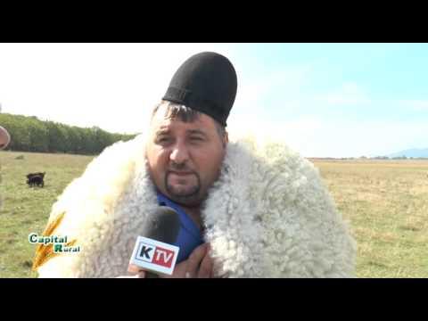 Capital Rural  - Nicolae Ciobanul
