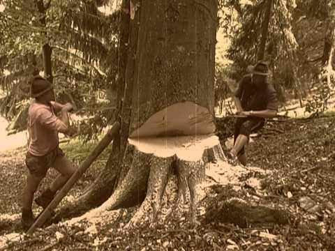 Die lustigen Holzhackerbuam