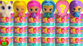 Shimmer and Shine Fashems Full Case Learn Colors and Counting