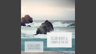 Ambient Ocean Noises