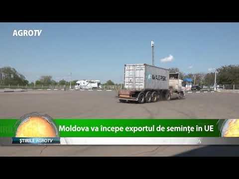 Moldova incepe exportul de seminte in UE