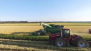 4c Farms Rice Harvest