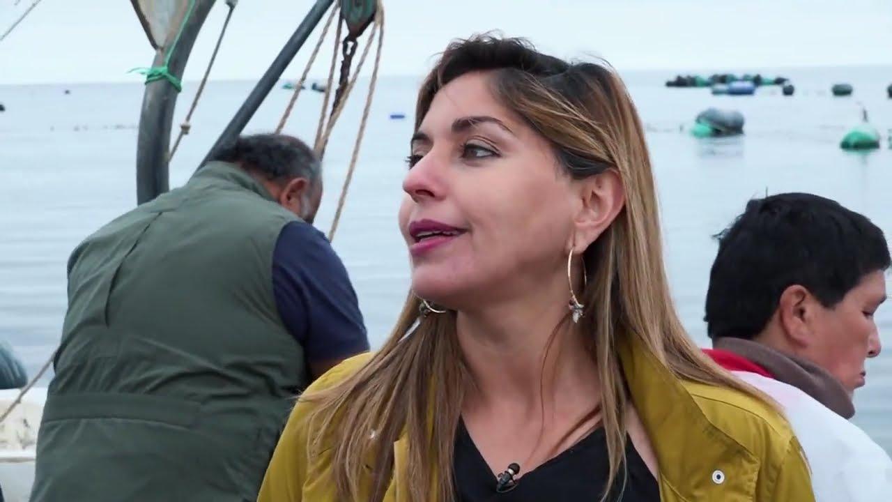 Carla, Bióloga Marina dedicada al desarrollo de la apicultura