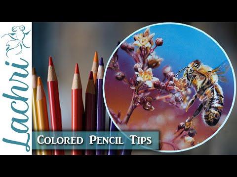 Colored Pencil &