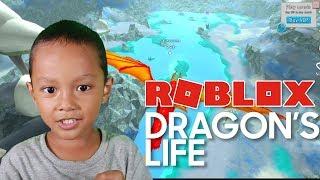 Lavito playing Game Roblox Dragon's Life