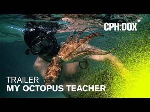 My Octopus Teacher trailers
