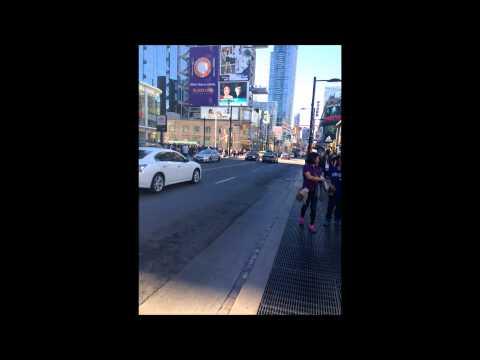 Toronto bbi