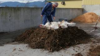 Composting Poultry Mortalities  Backyard Poultry Flocks