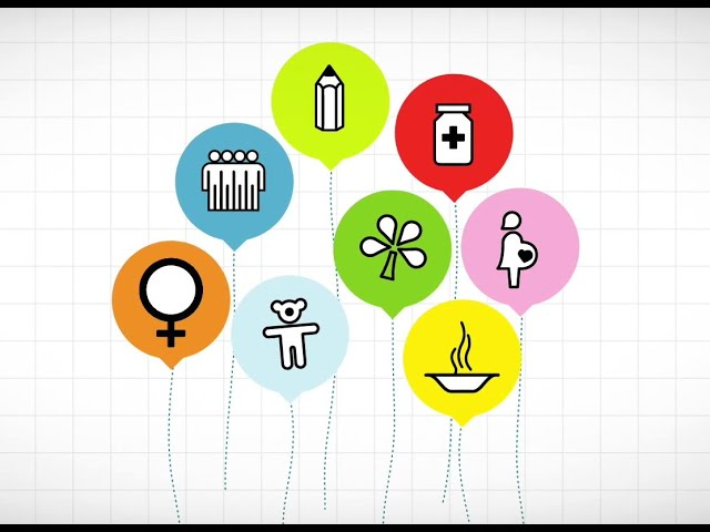 Evaluation Snapshot: Millenium Development Goals