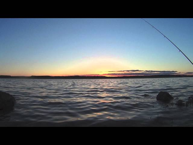 Pesca de carpas Travel Video