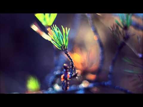 Клип Hiki - Lucid Dream