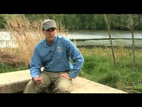 Dan Ashe - 16th Director Of The U.S Fish And Wildlife Service