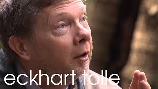 Being In Nature With Eckhart Tolle