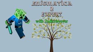 "Enigmatica 2: Expert - E11 ""Actually Additions!"""