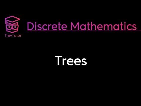[Discrete Math 2] Trees