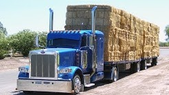 "Hay Trucker Legends of California, ""This is how.., ""LEGENDS"" are born"""""