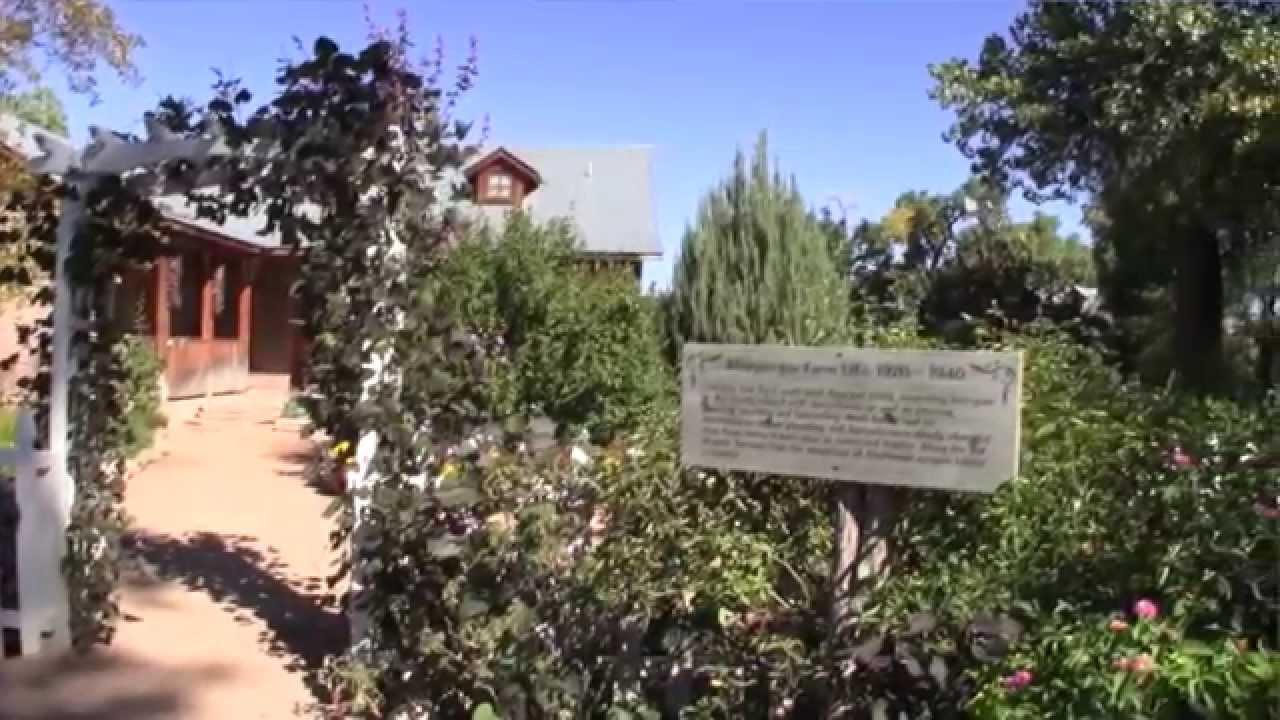 cider festival at the abq biopark botanic garden - Abq Biopark Botanic Garden