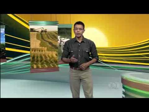 Видео Curso de classificador de grãos