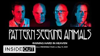 PATTERN-SEEKING ANIMALS - Raining Hard In Heaven (Album Track)