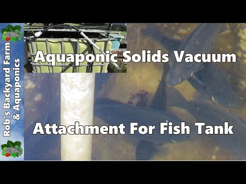 Aquaponic solids vacuum attachment for fish tank..
