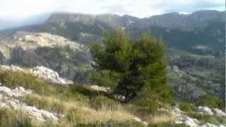 Excursión Fornalutx-Puig de Sa Bassa (Mallorca)