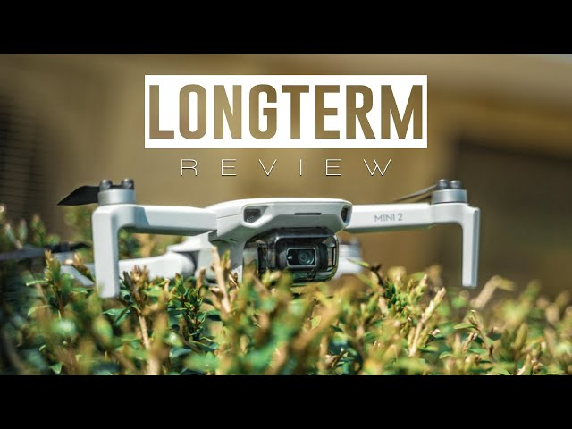 DJI Mini 2 LONGTERM Review - Worth Buying in 2021?