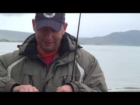 видео: Сибиряки в Монголии