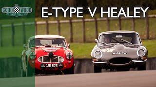 Jaguar E-Type and Austin Healey battle at Goodwood