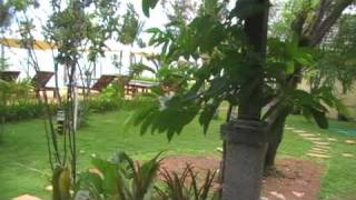 25520418 - BANK & BAMBAM Siam Beach Resort Hua Hin