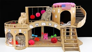 DIY Amazing  Cat House for Two Beautiful Kittens
