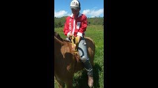 Desafiei o Gordinho a montar no burro pulador|ADB