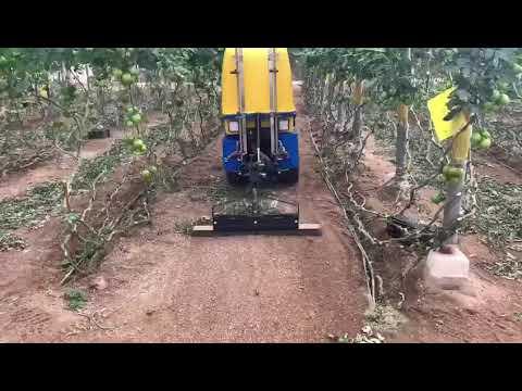 Tizona 35 video