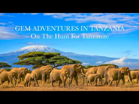 Gem Adventures In Tanzania: On The Hunt For Tanzanite