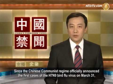 H7N9 Outbreak in China: Truth More Serious Than Released Information?