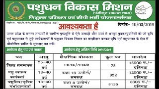 UP Pashu Mitra Vacancy 2019 Samanyavak, Swasthya Karyakarta, 9032 posts