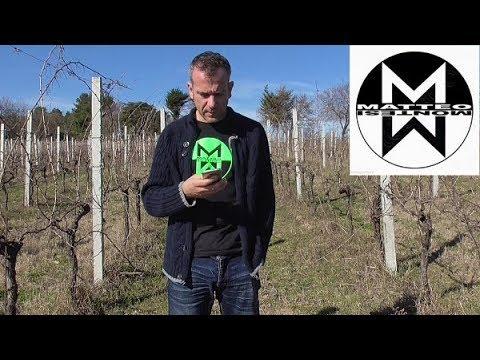 AUGURI A MATTEO MONTESI LUTTO COMPLEANNO 12 FEBBRAIO 2019   YouTube