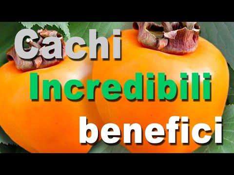 cachi:-incredibili-benefici-per-la-salute-|-proprietà,-usi-e-controindicazioni