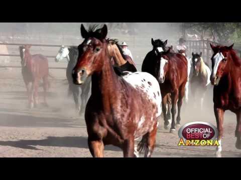 Tombstone Monument Ranch - Best Wild West Vacation - Arizona 2017