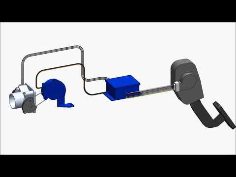 Sistema T.A.C Acelerador Electronico