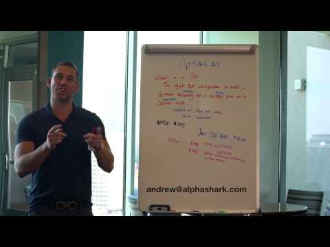 OPTIONS 101: WHAT ARE OPTIONS? |Calls & Puts| AlphaShark Teachings