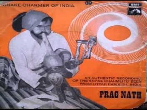 Been music snake charmer of india